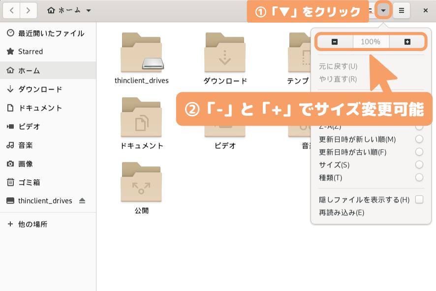Debian 10(GNOME)のMetaTraderダウンロード-アイコンサイズ変更