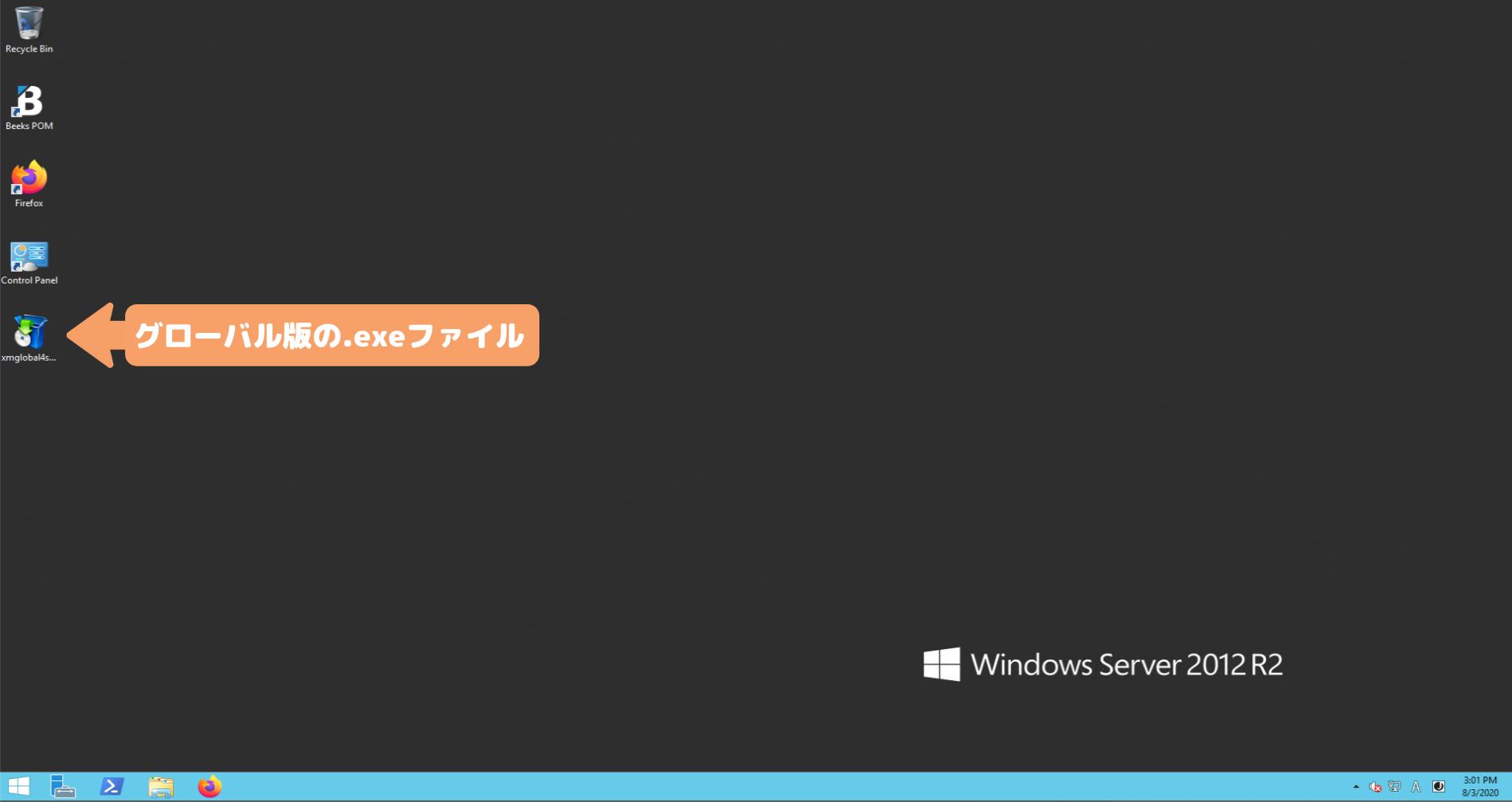 XMグローバル版のsetup.exeファイル